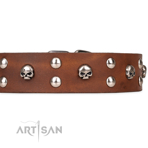 Handy use studded dog collar of finest quality genuine leather