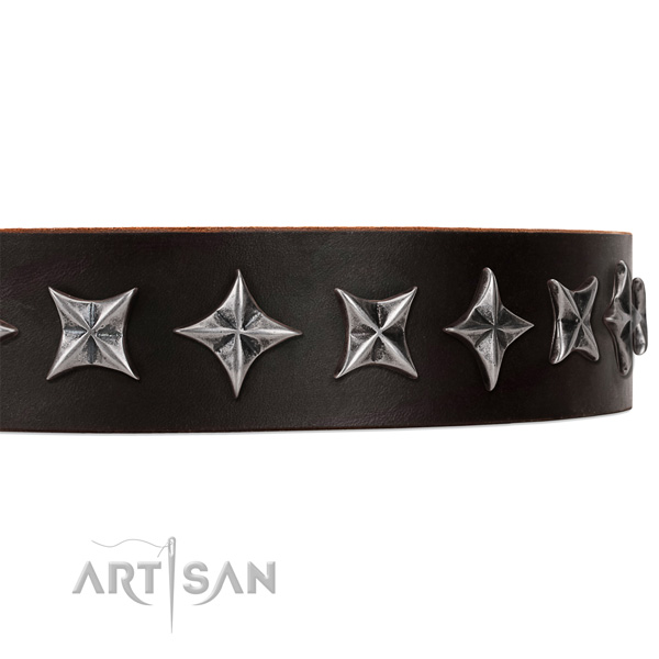 Daily walking adorned dog collar of strong full grain genuine leather