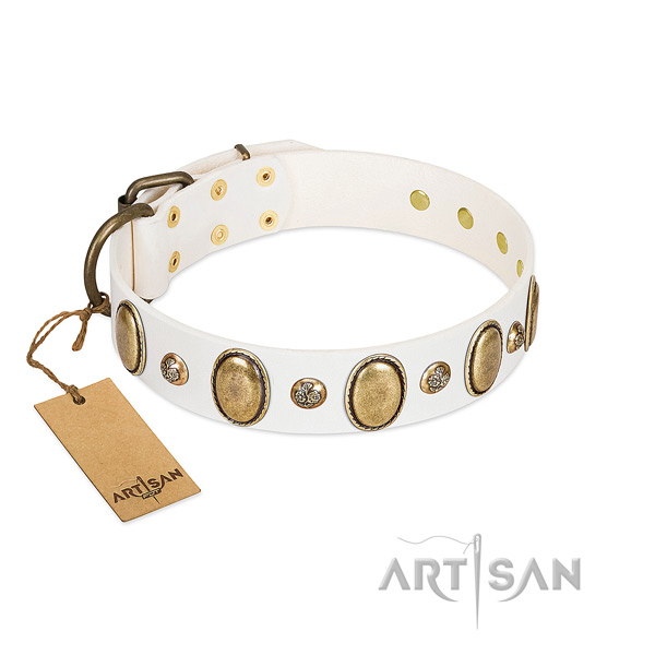 Leather dog collar of quality material with exceptional adornments