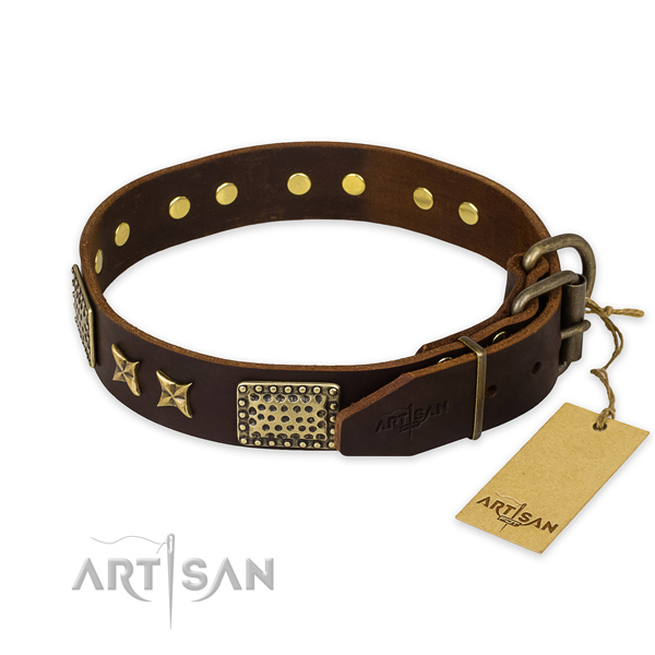 Rust-proof traditional buckle on leather collar for your beautiful canine
