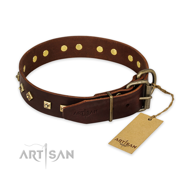 Corrosion resistant fittings on full grain genuine leather collar for walking your dog