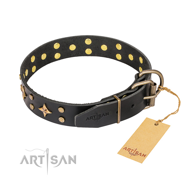 Daily walking studded dog collar of high quality full grain genuine leather