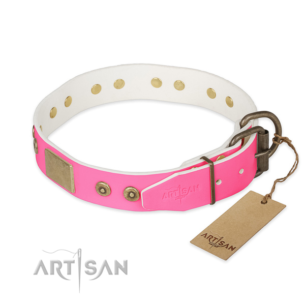 Corrosion proof traditional buckle on easy wearing dog collar