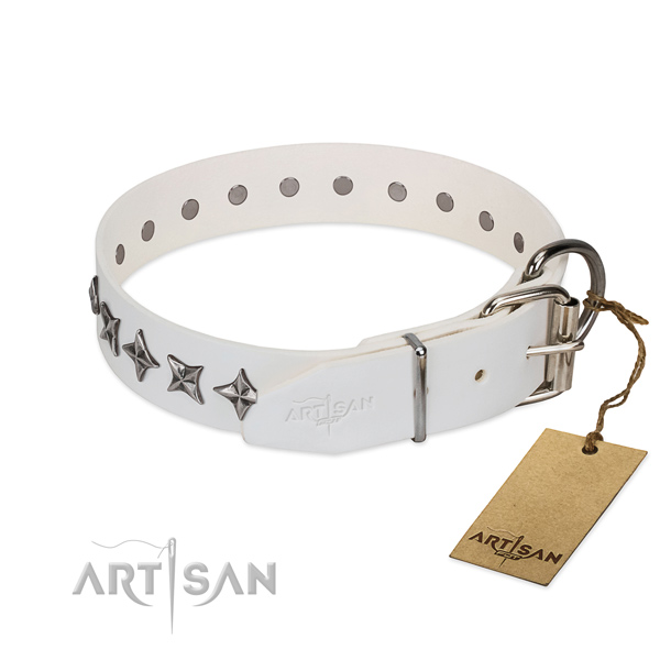 Reliable full grain natural leather dog collar with unusual studs