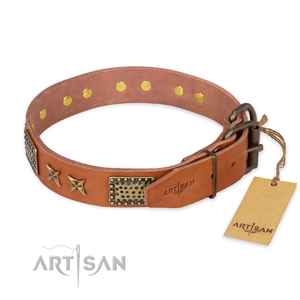 Corrosion proof D-ring on genuine leather collar for your lovely four-legged friend