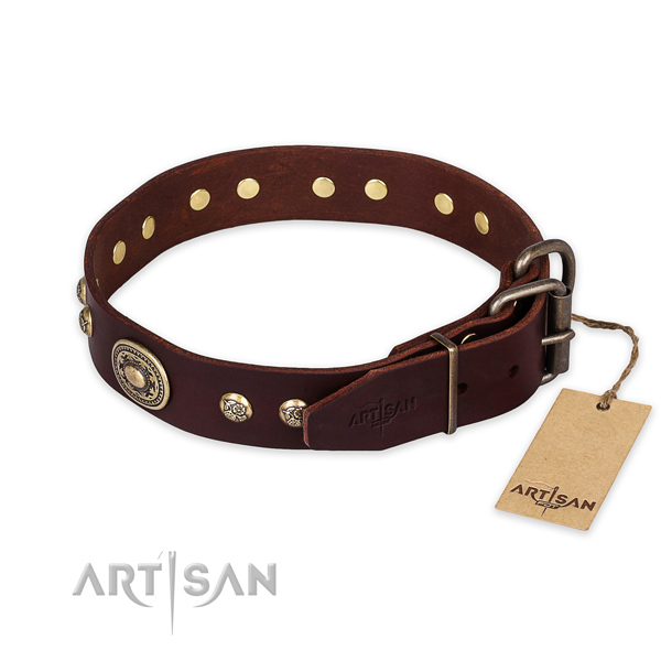 Corrosion resistant fittings on genuine leather collar for daily walking your pet