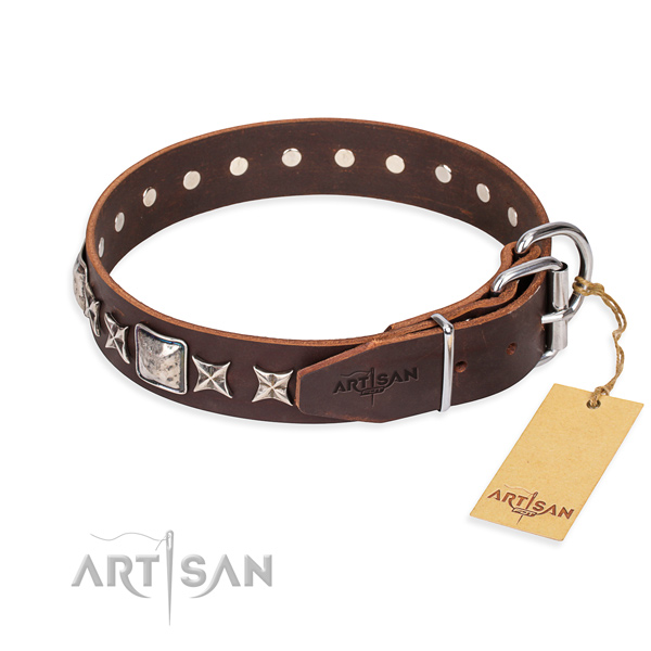 Quality embellished dog collar of leather