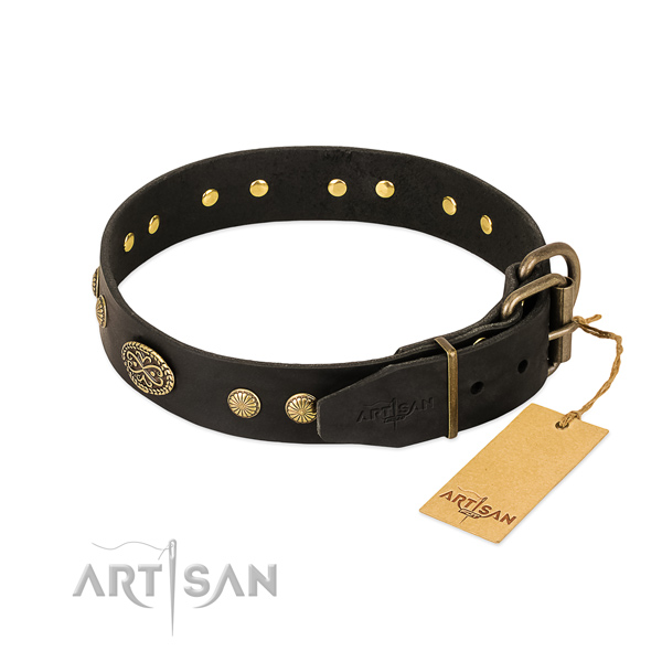 Corrosion proof studs on full grain leather dog collar for your doggie