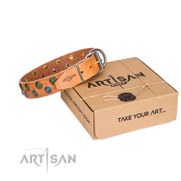 Daily walking dog collar of reliable genuine leather with adornments