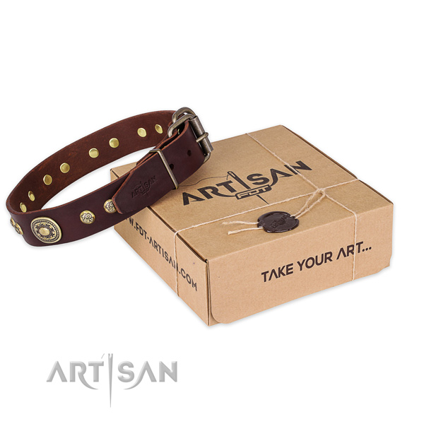 Reliable fittings on full grain leather dog collar for stylish walking