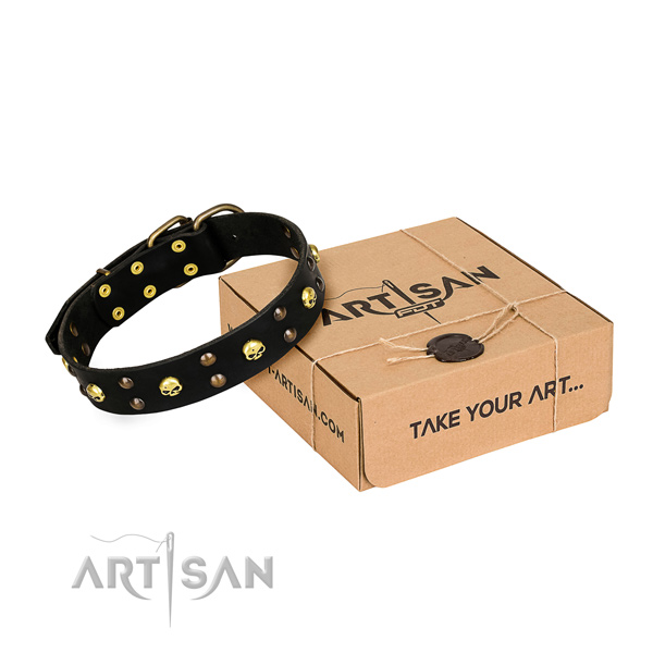 Daily use dog collar of finest quality full grain leather with embellishments