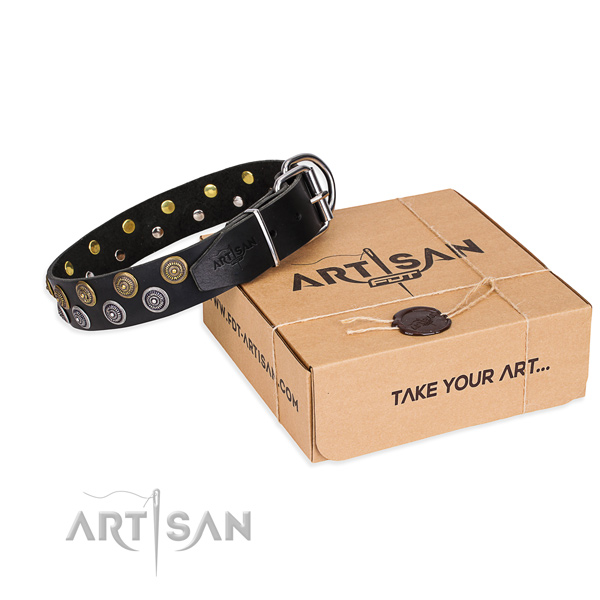 Walking dog collar of top notch natural leather with embellishments
