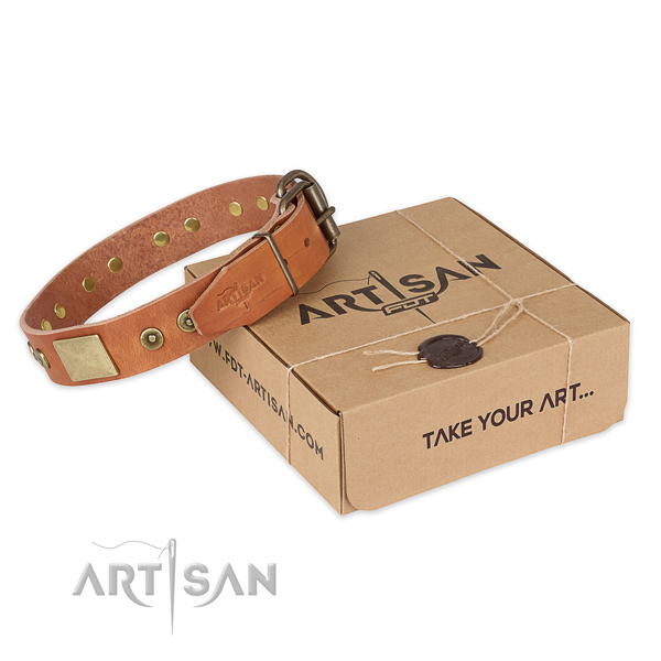Rust resistant fittings on full grain natural leather dog collar for daily walking