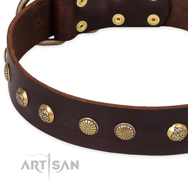 Full grain leather collar with corrosion resistant buckle for your lovely dog