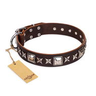 """Perfect Impression"" FDT Artisan Brown Leather dog Collar with Silvery Square Studs"