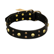 """Heavy Metal"" Leather dog Collar with Skulls and Studs 1 1/2 inch (40 mm)"