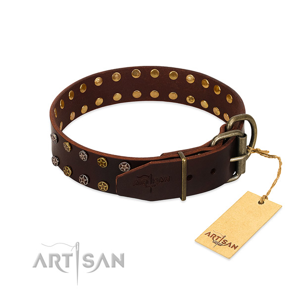 Walking full grain genuine leather dog collar with extraordinary adornments