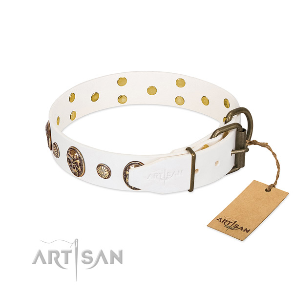 Durable hardware on full grain genuine leather collar for walking your doggie