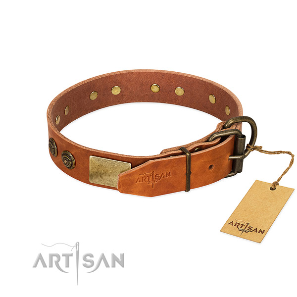 Rust resistant D-ring on genuine leather collar for stylish walking your canine