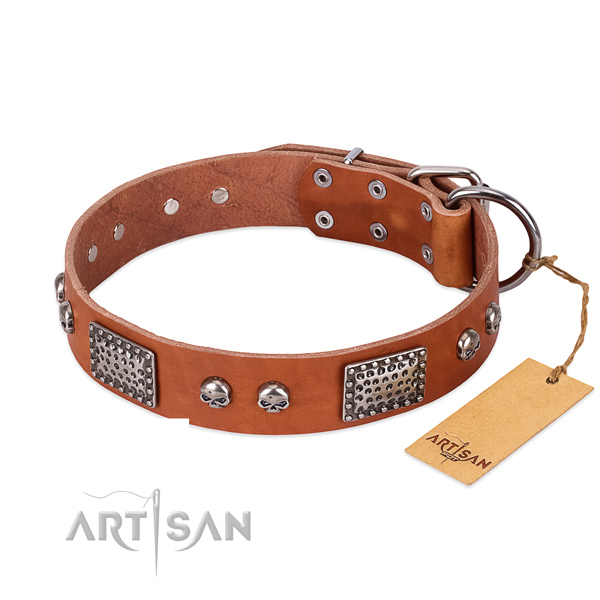 Easy wearing full grain leather dog collar for stylish walking your four-legged friend