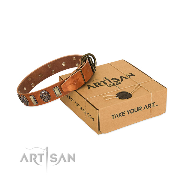 Corrosion proof buckle on leather dog collar for easy wearing