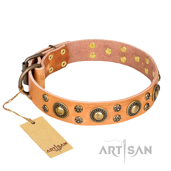 Comfy wearing dog collar of durable natural leather with studs