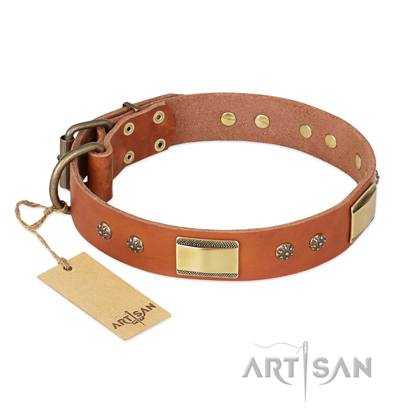 Amazing full grain natural leather collar for your four-legged friend