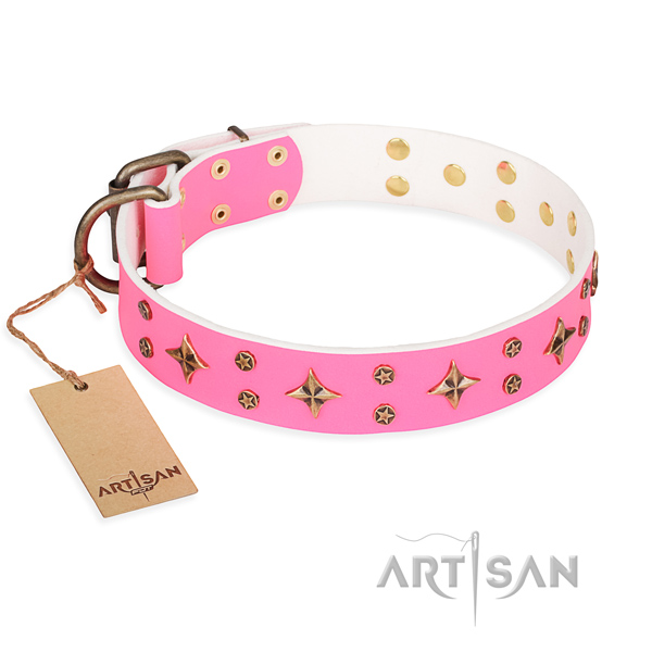 Daily use dog collar of quality natural leather with adornments