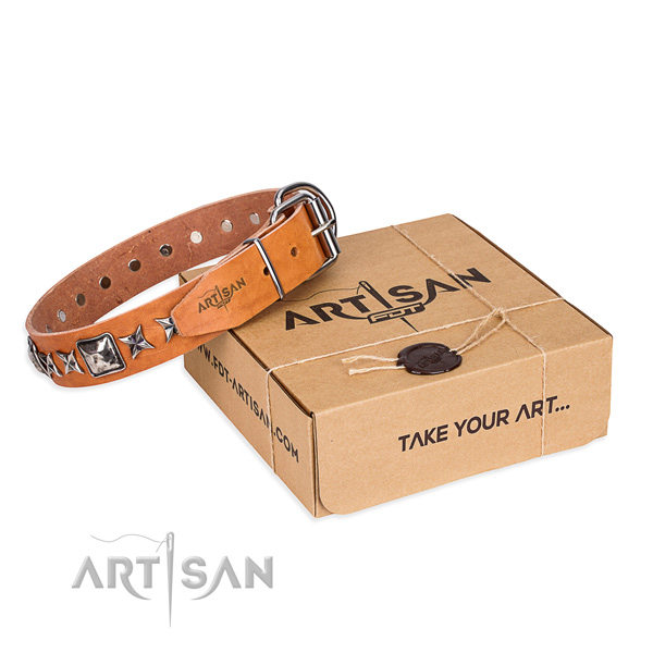 Everyday use genuine leather dog collar with adornments