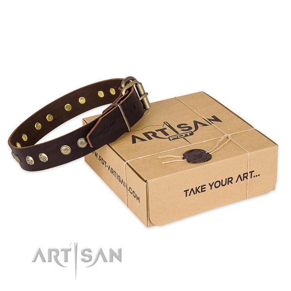 Corrosion proof buckle on full grain natural leather collar for your lovely dog