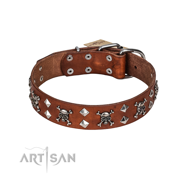 Handy use dog collar of quality leather with adornments