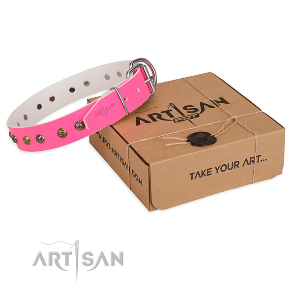 Comfortable wearing dog collar with Significant rust resistant adornments