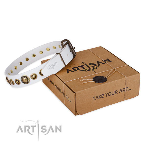 Gentle to touch full grain natural leather dog collar crafted for comfy wearing