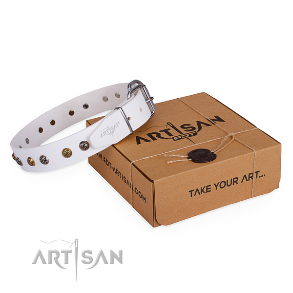 Handy use dog collar with Impressive strong studs