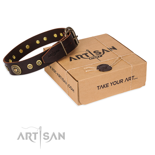 Full grain leather dog collar made of quality material with corrosion proof traditional buckle