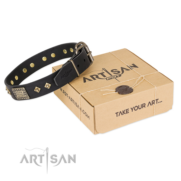 Exceptional full grain natural leather collar for your beautiful dog