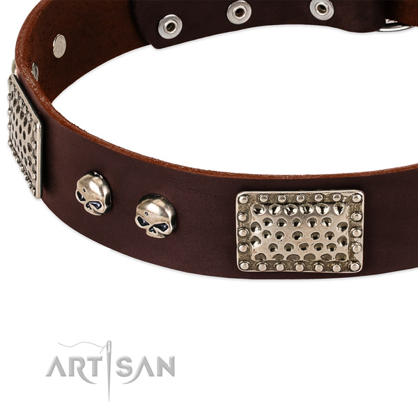Rust-proof studs on natural genuine leather dog collar for your four-legged friend