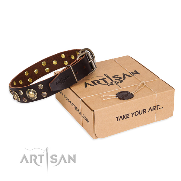Comfy wearing dog collar of fine quality full grain natural leather with adornments