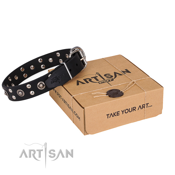 Fancy walking dog collar with Stylish corrosion proof studs
