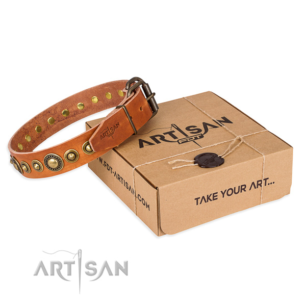 High quality leather dog collar crafted for daily use
