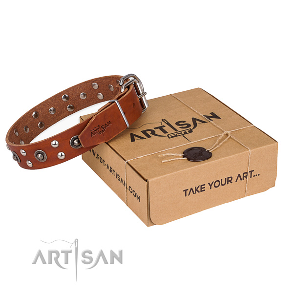 Corrosion proof D-ring on full grain genuine leather collar for your stylish doggie