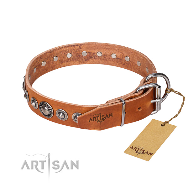 Leather dog collar made of high quality material with durable adornments