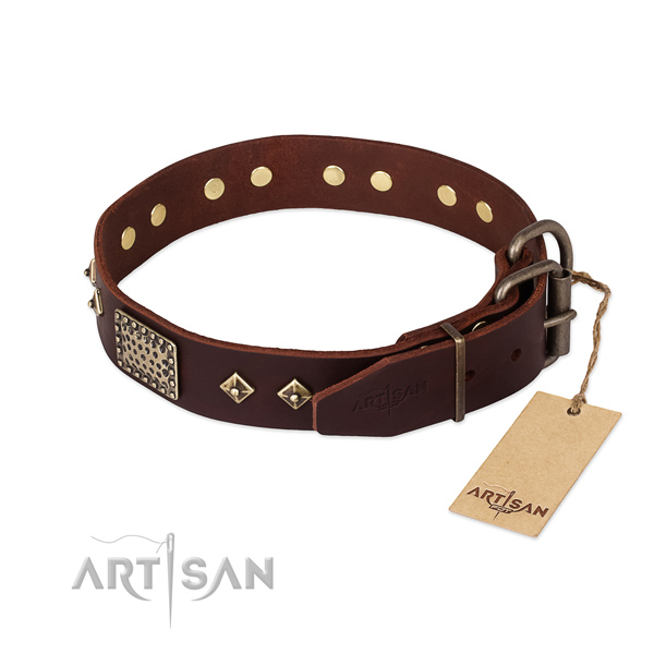 Full grain natural leather dog collar with corrosion proof hardware and adornments