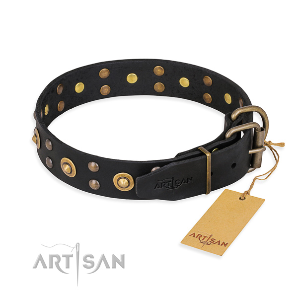 Durable hardware on leather collar for your handsome dog