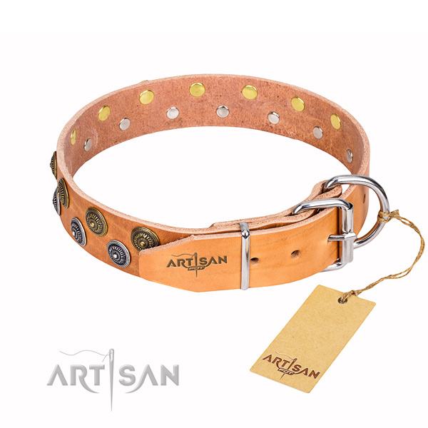 Walking decorated dog collar of strong full grain leather