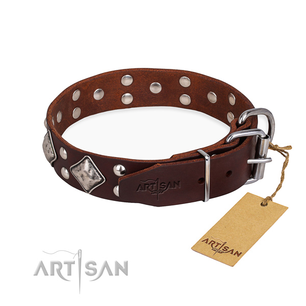 Full grain natural leather dog collar with stunning reliable adornments