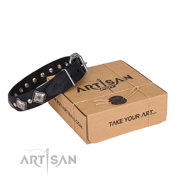 Walking dog collar of top quality genuine leather with adornments