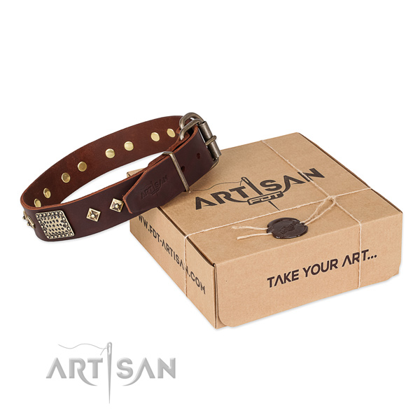 Top quality full grain genuine leather collar for your attractive pet
