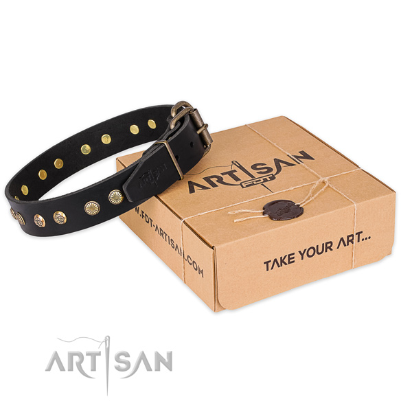 Corrosion proof D-ring on full grain natural leather collar for your stylish canine