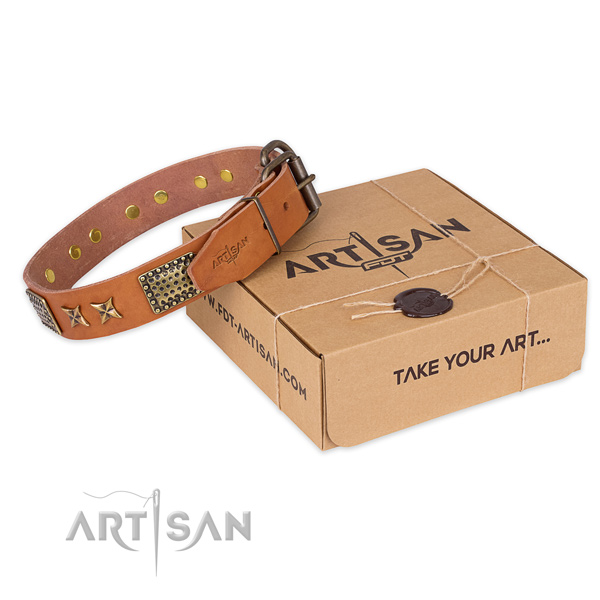 Reliable fittings on leather collar for your lovely four-legged friend